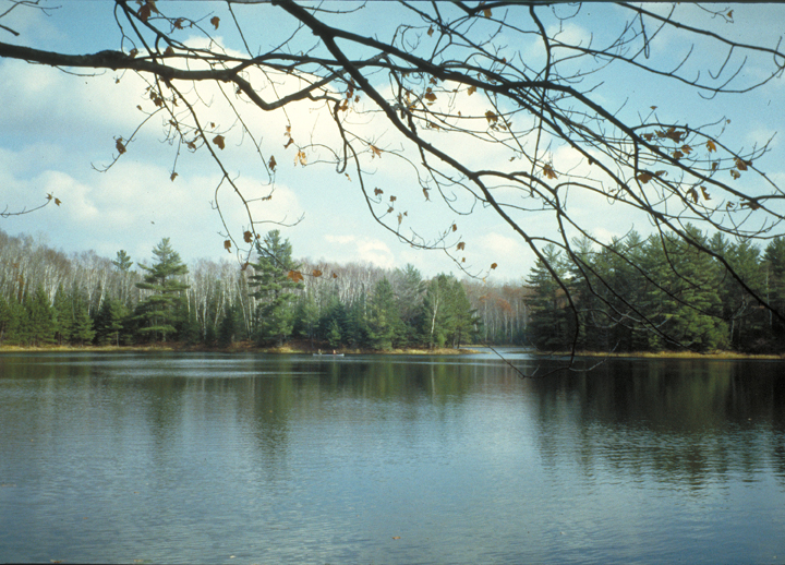 Bare branches mark the top of the photo.  A lake surrounded by trees is the focus.
